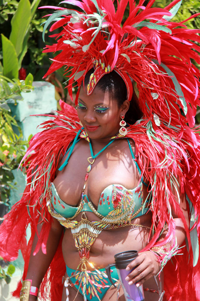 You tell Trinidad and tobago carnival opinion